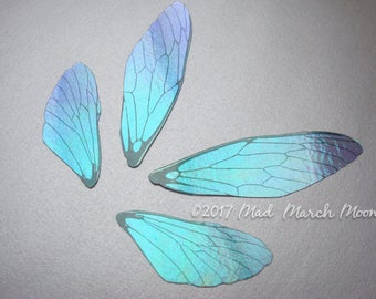 Blue Blush Fairy wing set, iridescent wings with upper and lower pairs Cicada Style for crafts