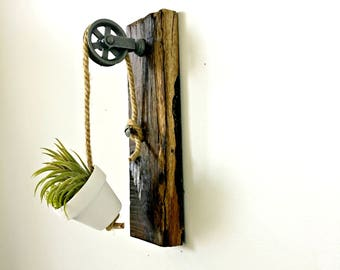 Mini galvanized pulley white clay pot air plant hanging  reclaimed wood/wall decor- air plant mini terracotta pot. Rustic Industrial decor
