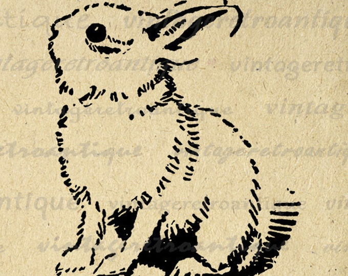 Cute Bunny Rabbit Digital Image Printable Bunny Digital Easter Nursery Download Spring Graphic Antique Clip Art Jpg Png Eps HQ 300dpi No.061