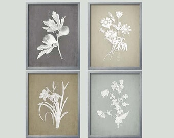 Gray Botanical, French Country Wall Art, Botanical Collection, Gray Prints,  Grey Wall