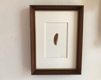 "Carolian Wren Feather Painting in a Vintage Wood Frame - Original Bird Feather Watercolor - 5 3/4 "" x 6 3/4"""