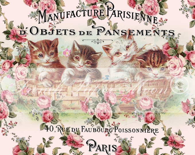 Vintage Digital Shabby Cats and Roses, Vintage Kittens, Shabby Roses, French Typography, French Pillow Fabric Transfer Download