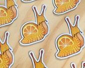 Fruits escargot MAGNET - aimant de réfrigérateur escargot Orange