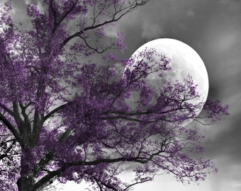 Black White Purple Wall Art Photography/Contemporary/Modern/Tree Moon/Bedroom Home Decor Matted Picture