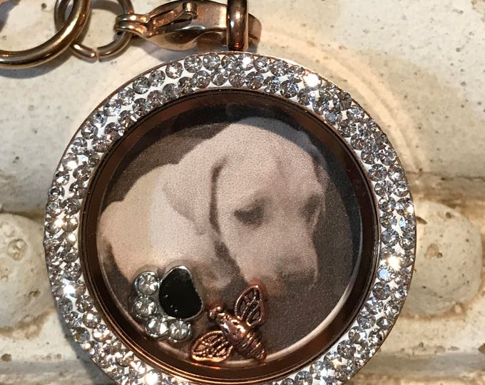 Rainbow bridge pet loss -picture floating locket ~ rose gold stainless steel choice of chain-  dog/cat lover gift in remembrance of