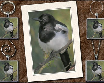 Magpie Photo Greeting Card Set - Magpie Pendant, Magpie Keyring, Magpie Ornament, Magpie Wine Charm -Bird Photo Note Card (GP46)