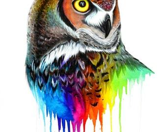 Rainbow owl -signed Art Print