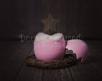 Newborn Egg Digital Drop