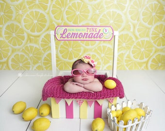 Lemonade Stand with Mini Banner