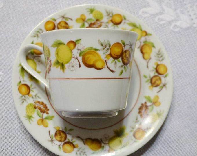 Vintage Noritake Elloree Cup and Saucer Cook n Serve China 2169 Fruit Design Replacement Japan Panchosporch