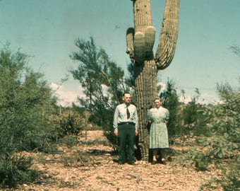 Vintage Red Border Kodachrome Photo Slide of Couple Standing by Giant Cactus, 1940's Original Color Transparency, Vernacular Photography