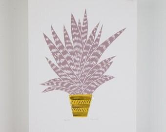 Aloe vera plant print, hand drawn illustration, digital print A4