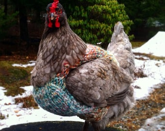Chicken Sweater, Sweater for Chickens and Roosters, Sweater for Chickens, Chickens, Gift Ideas