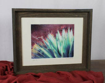 Agave Glow, Original Photograph with Wood Frame, 8Wx10L, one-of-a-kind