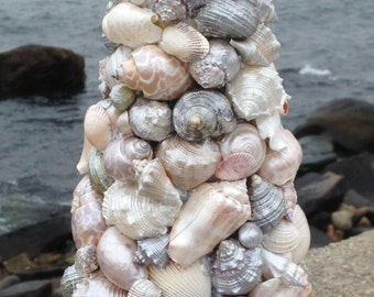 Beach Decor - Shell Topiart - SeaShell Topiary (ST010)
