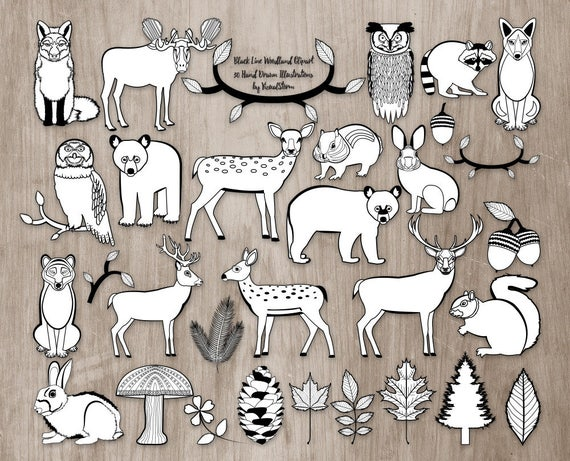 Black White Woodland Clipart Doodle Animal Scrapbooking Graphics Forest Coloring Book Images And Critter Drawings From VizualStorm
