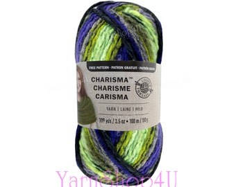 DRAGONFLY Bulky Charisma Loops and Threads Yarn. This Variegated Green and Purple Ombre Yarn is 3.5oz 109yds. Chunky Thick Soft Acrylic Yarn