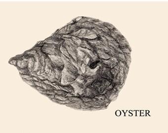 Original illustration Oyster card design A