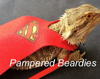 Super Hero Capes for Bearded dragons! Superman, Supergirl, Batman, Batgirl. Two sizes.