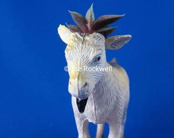 BABY GOAT handmade upcycled gasteria succulent animal planter living art
