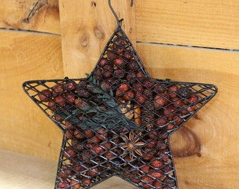 Walk in the Woods Hanging Mesh Star