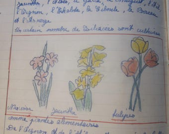 Vintage French antique drawing Book École Marie-Josephe du Colombier Marseille craft book children cahier école beaux arts School of France