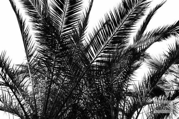 Tropical Tablecloth, Palm Tree Tablecloth, Black And White, Kitchen  Accessories, Home Decor, Kitchen Table Decor