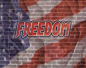 Graffiti Brick GBW007 - Graffiti Brick Freedom on Glare Free Vinyl 7' wide by 5' tall