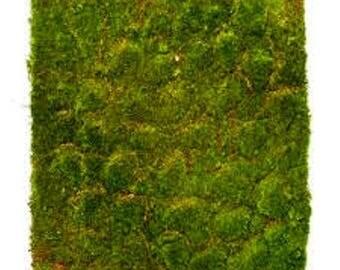 Moss Mat Artificial Grass Square Flat Fake Synthetic Grass 20cm x 20cm long