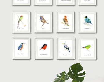 bird painting print, set of 12 print, bird prints set, wall art print, bird art, watercolor print