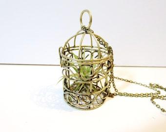 Air Plant Necklace -Live Plant Necklace -Miniature Terrarium Live plant Necklace - leather planter necklace
