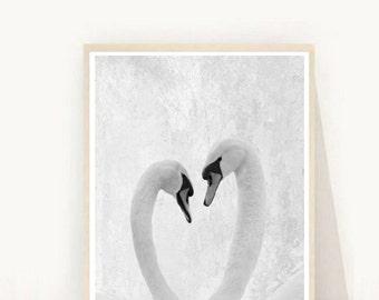 Swan Print, Swans Photo, Printable Art, Heart Print,  Art Print, Textured, Grey Wall Art, Wall Decor, Black and White Swan, digital Download