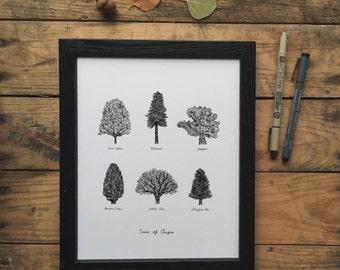 Trees of Oregon