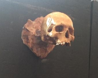 Mini Skull Knob Set (x4)