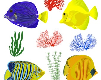 Set Clipart - Red sea Fish , Sea Shells, Corals - Digital Clip Art (Instant Download) patterns, frame