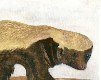 Honey Badgers Don't Care, A4 Nature Print. A Watercolor Honey Badger, For Wildlife Nature Decor, African Nature Wall Art, Honey Badger Gift.