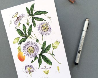 A5 Notebook - Passion Flower