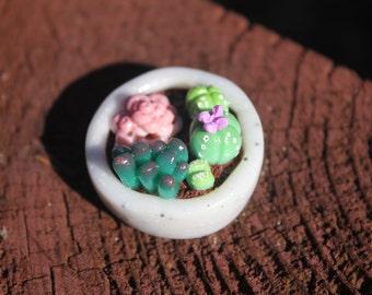 Miniature Garden, Mini Succulents, Miniature Cactus, Polymer Clay Plants, Fairy Garden, Doll House Plants, Tiny Succulent, Fairy Accessory