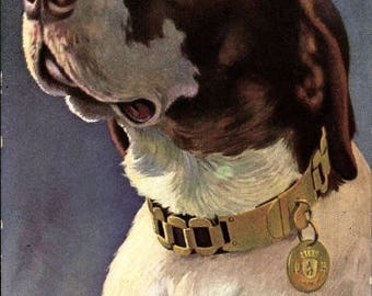 "MINT c.1910s TUCK 321 B, Postcard English Pointer Dog; Serie: ""Rasse-Hunde"" No. 321B Stunning Artist Postcard"