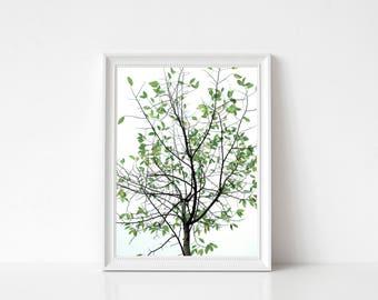 Trees Landscape print, Photography Wall Art Print, Large Printable Poster, Digital Download, Modern Decor