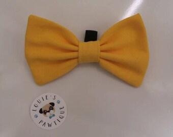 Mellow Yellow Bowtie