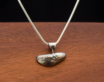 Mussel shell necklace - a single silver shell with decorative bail on silver snake chain