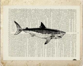 shark dictionary page print
