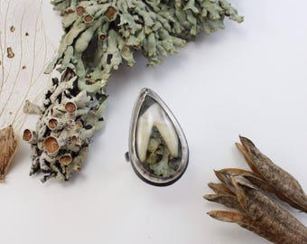 BENEATH THE TREES ||| Handmade Ring with Tooth and Real Lichen - size 7