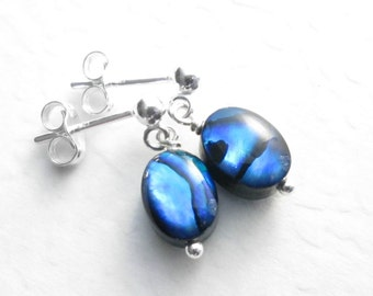 Small Abalone Dangle Earrings, Blue Sea Shell Jewelry, Sterling Silver Posts