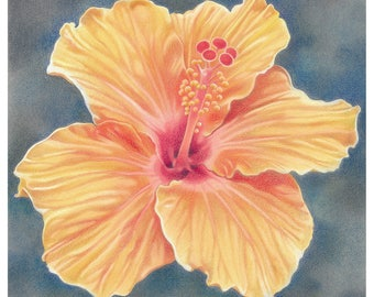 "Flower Greetings Card - ""Orange Hibiscus"""