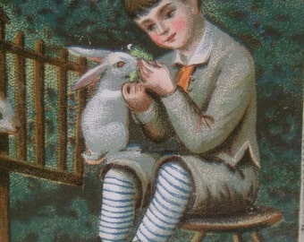 Young Boy with Bunny Rabbits, Striped Socks - Colorful Victorian Card Scrap - 1800's