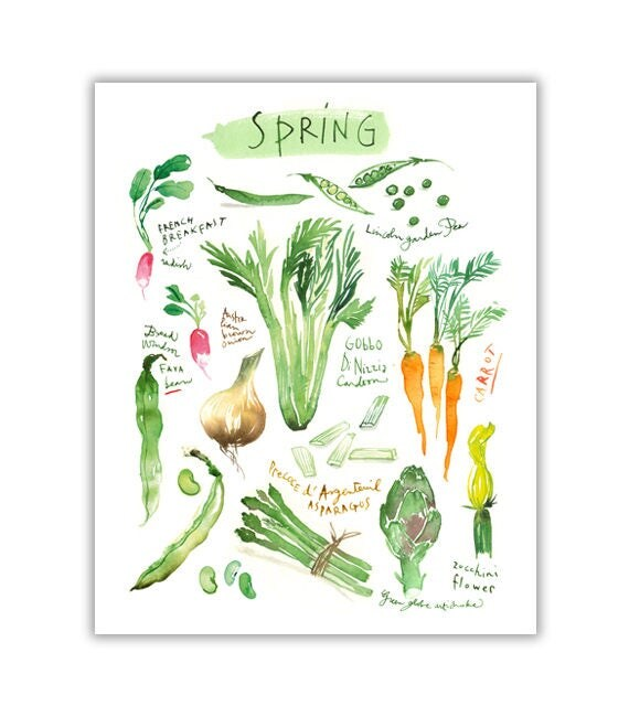 Kitchen Decor Vegetables: Spring Vegetable Kitchen Art Print Green Kitchen Decor