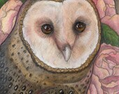 RESERVED FOR Imc18961......Barn Owl...Original 5x7 Illustration