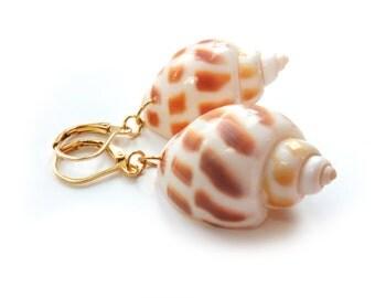 Genuine Shell Gold Earrings